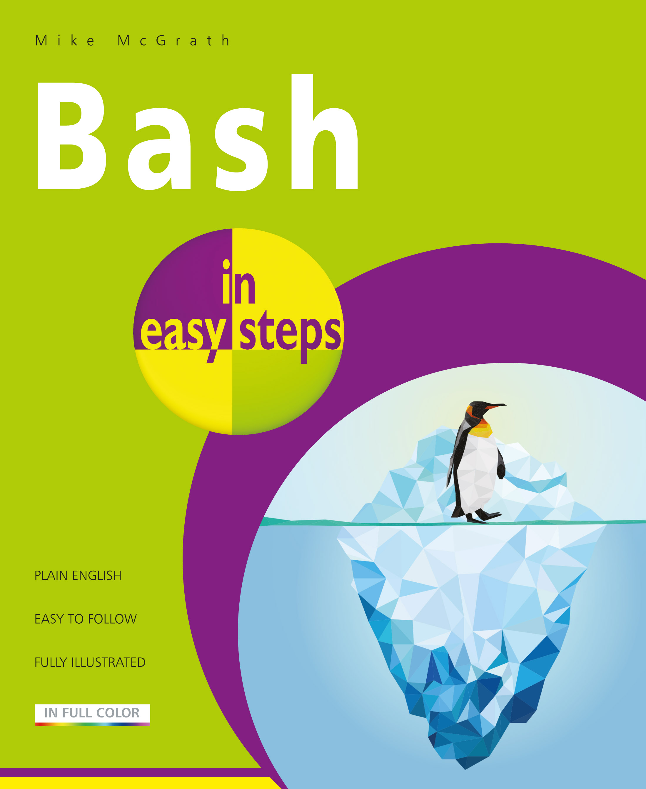 Bash in easy steps 9781840788099